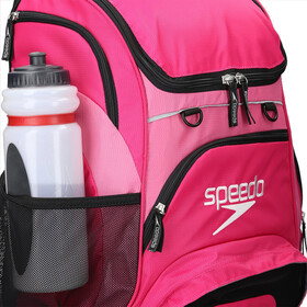 speedo Teamster Mochila L, purple/pink